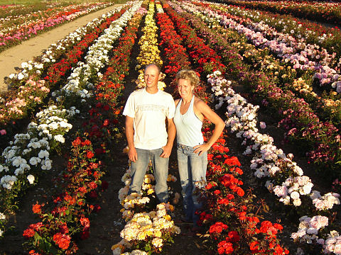 Geert and Wilma - Southern Roses